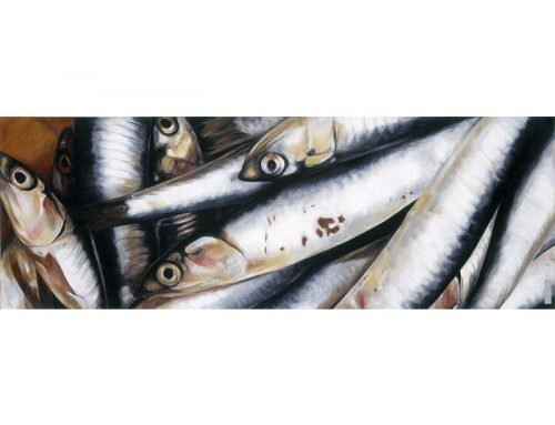 pilchards_2007