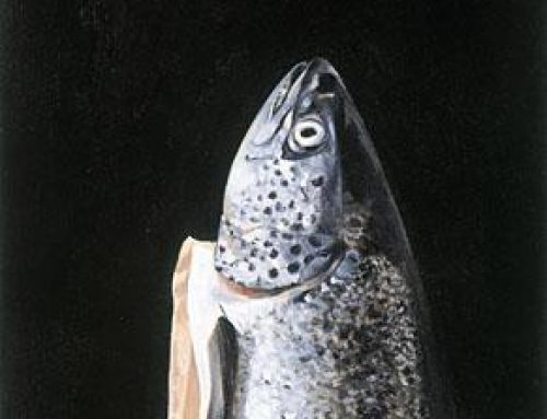 salmon_study